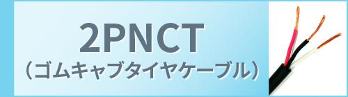 2PNCT